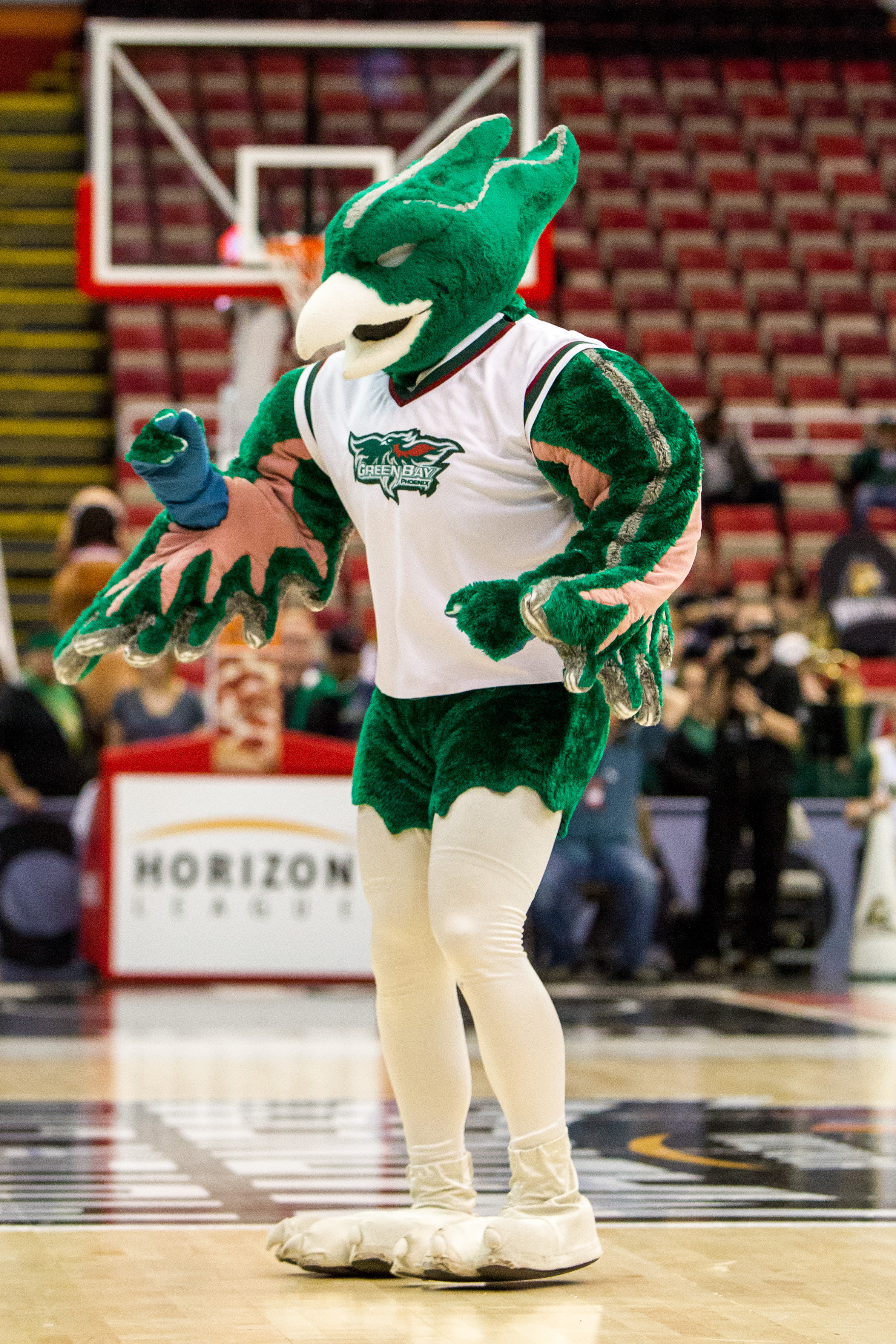 NCAA BASKETBALL: MAR 08 Horizon League Tournament - Green Bay v Wright State