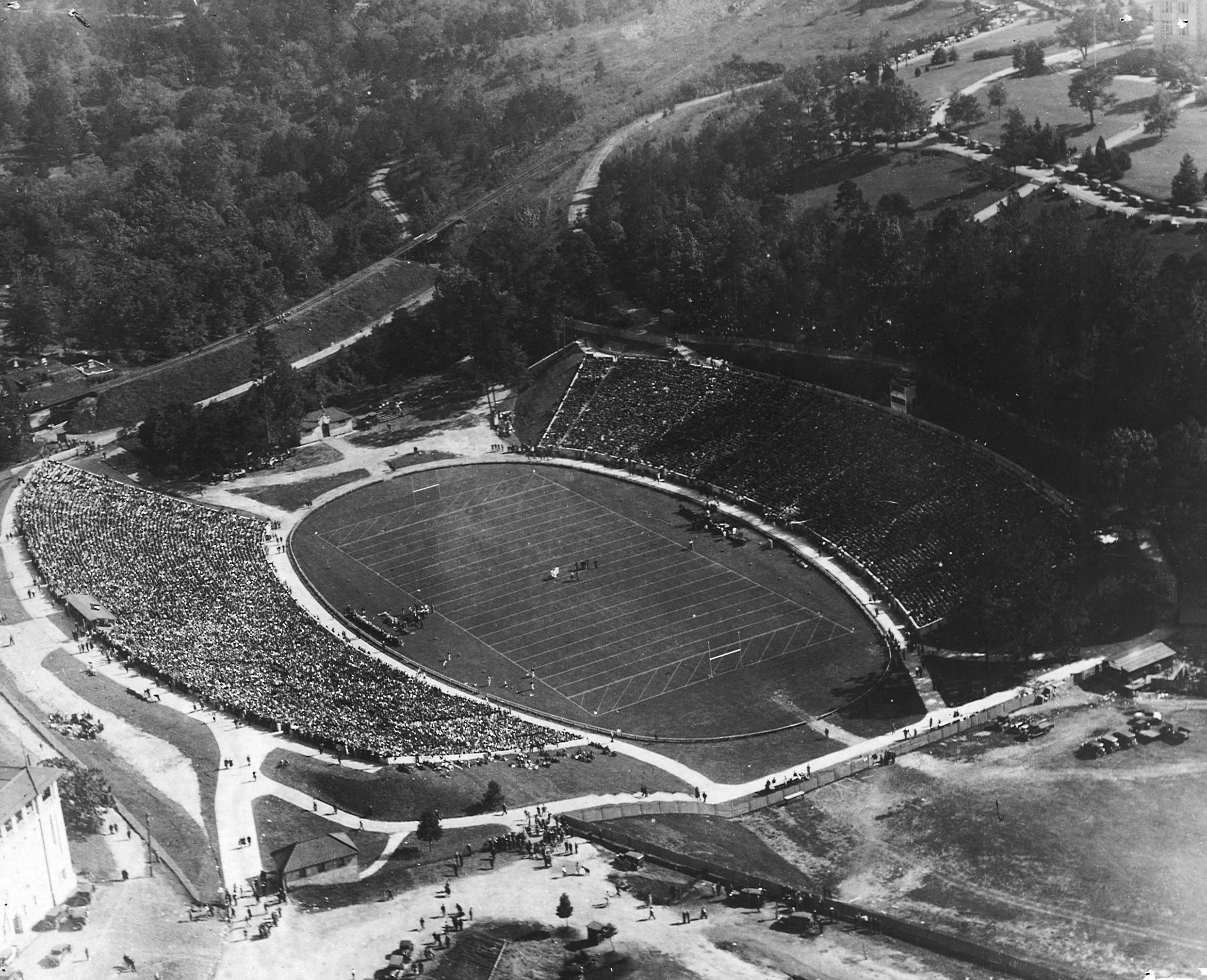 University Of Georgia Bulldogs Football