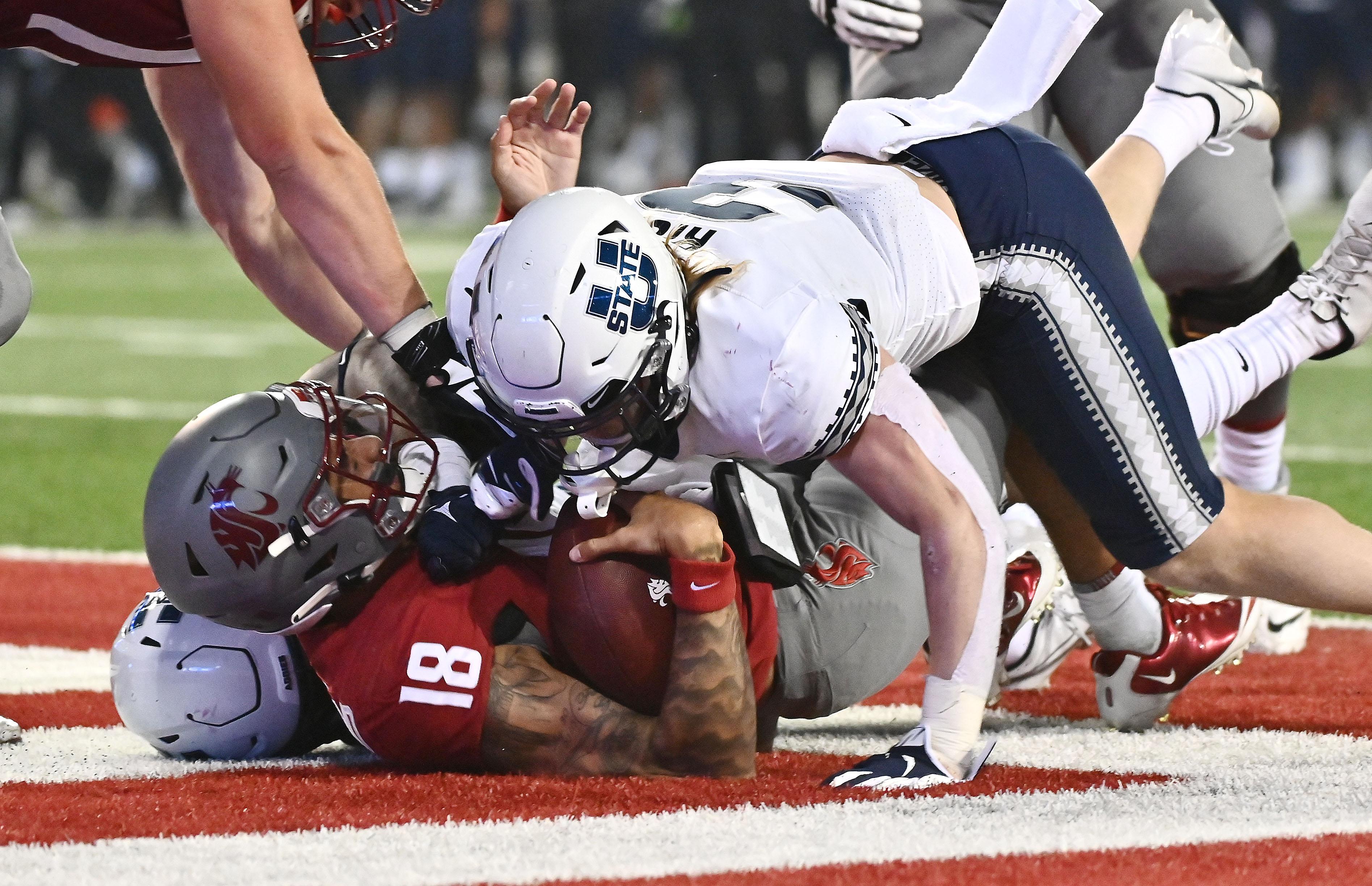 NCAA Football: Utah State at Washington State
