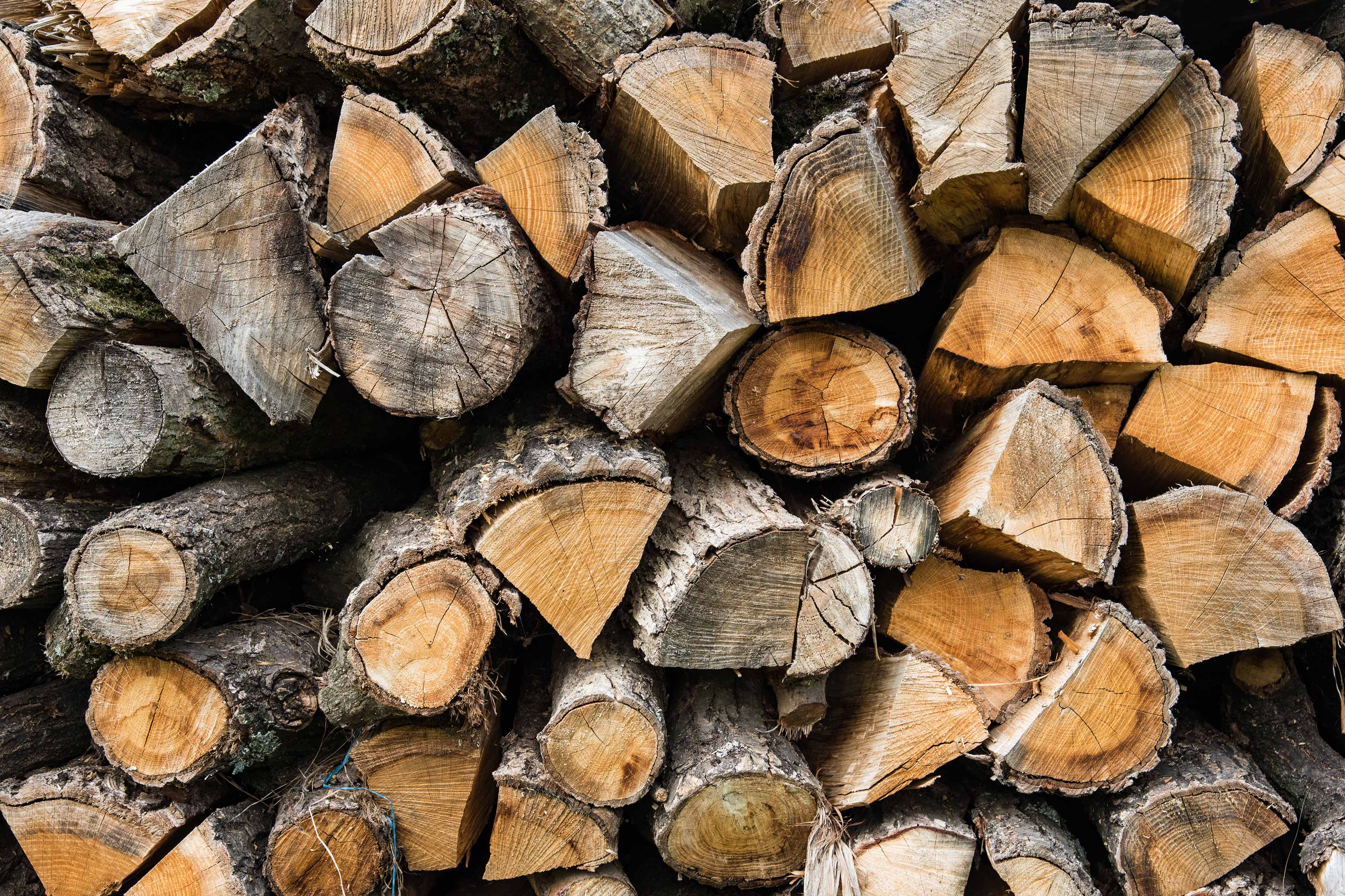A close up stack of cut wood