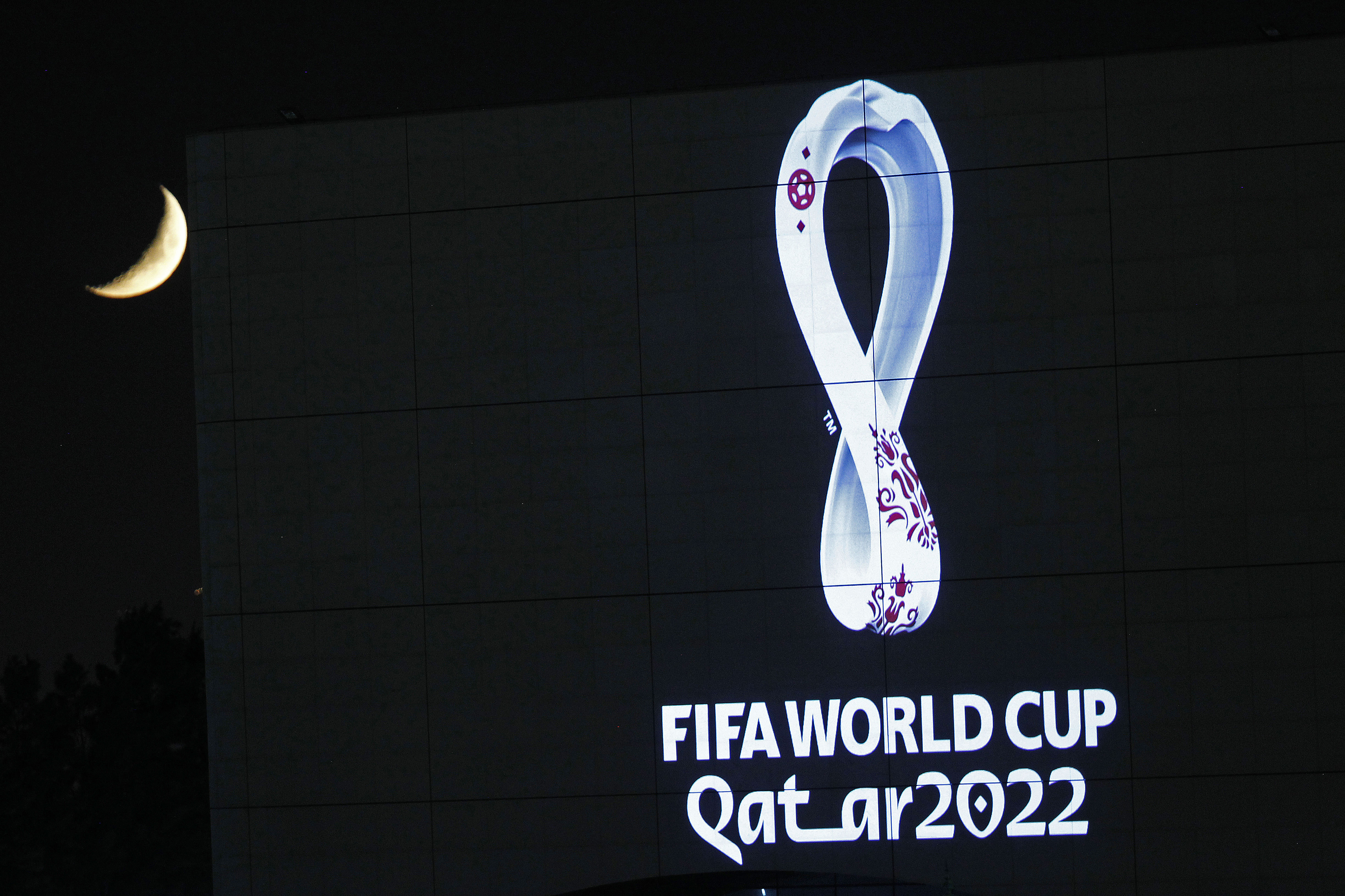 A group of professional soccer leagues will oppose FIFA's plan to hold the men's World Cup every other year.