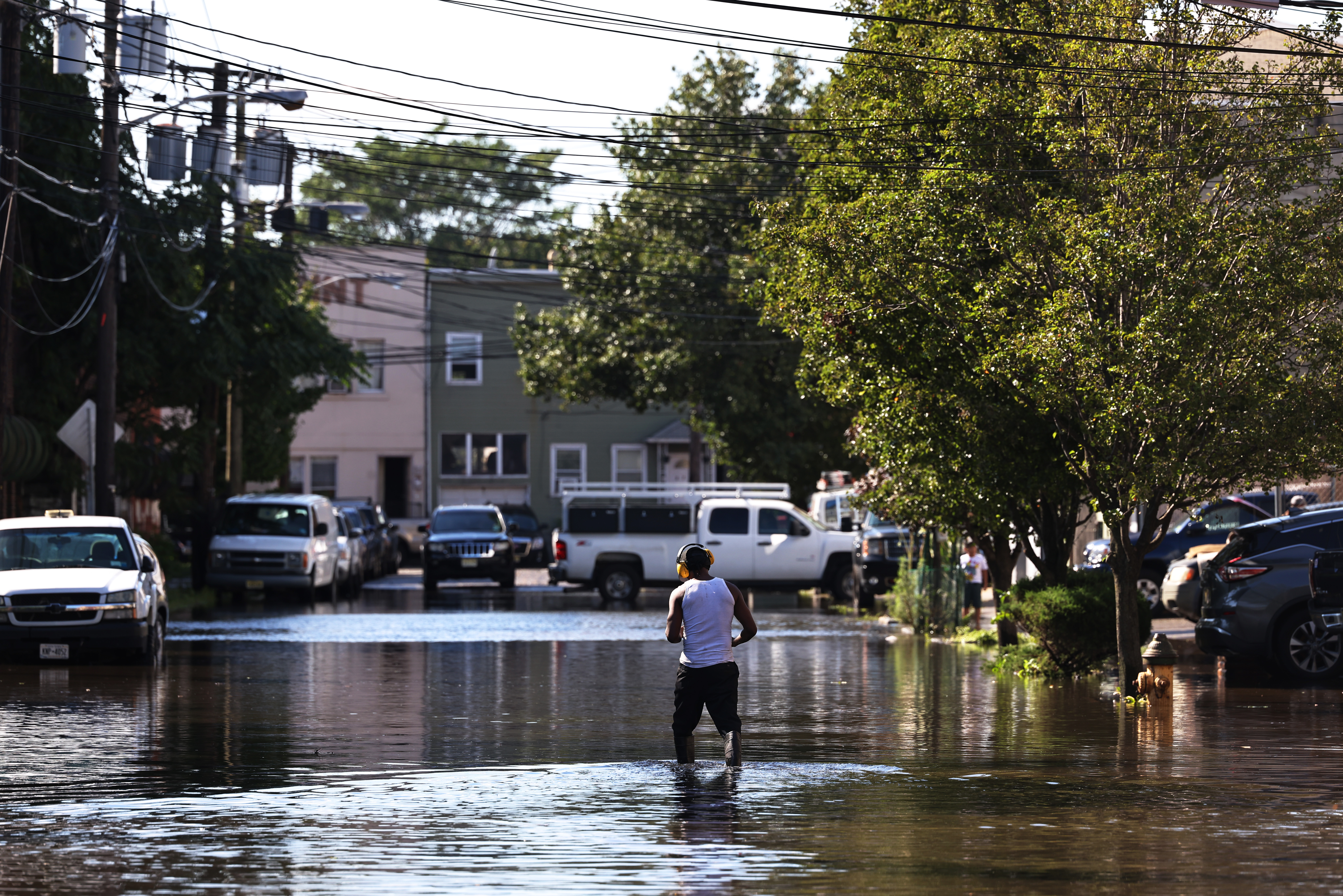A man walks down a flooded street, lined with cars and large green trees.