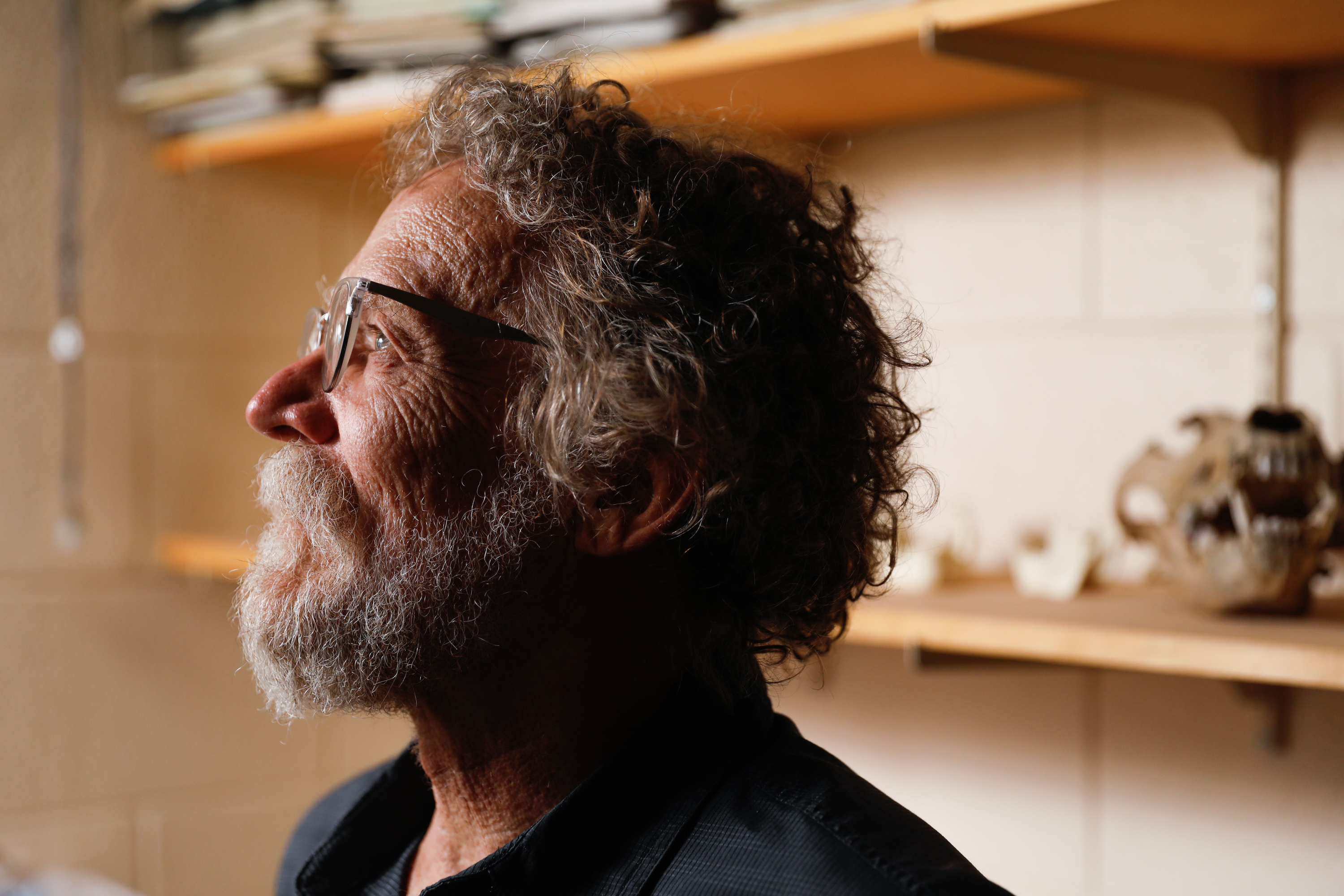 David Carrier, a professor of biology and co-author of a study that explores how beards serve an evolutionary purpose of protecting the jaw during fistfights, poses for a portrait in his office at the University of Utah in Salt Lake City on Friday, Sept. 10, 2021.