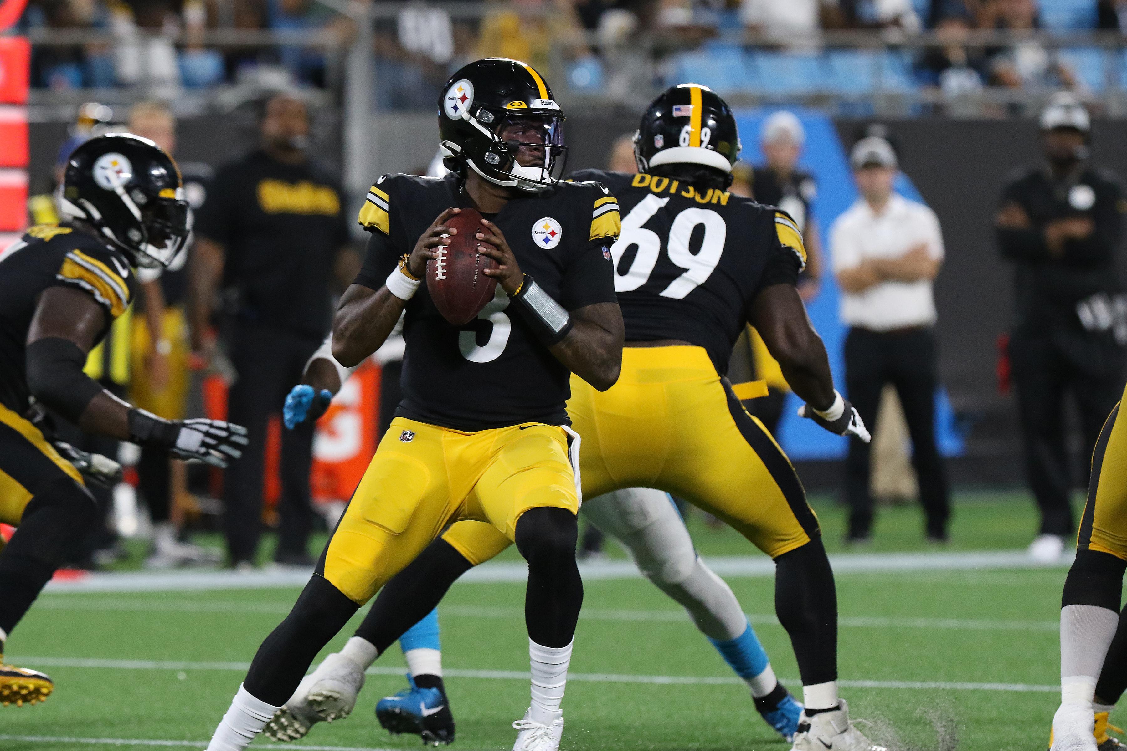 NFL: AUG 27 Preseason - Steelers at Panthers