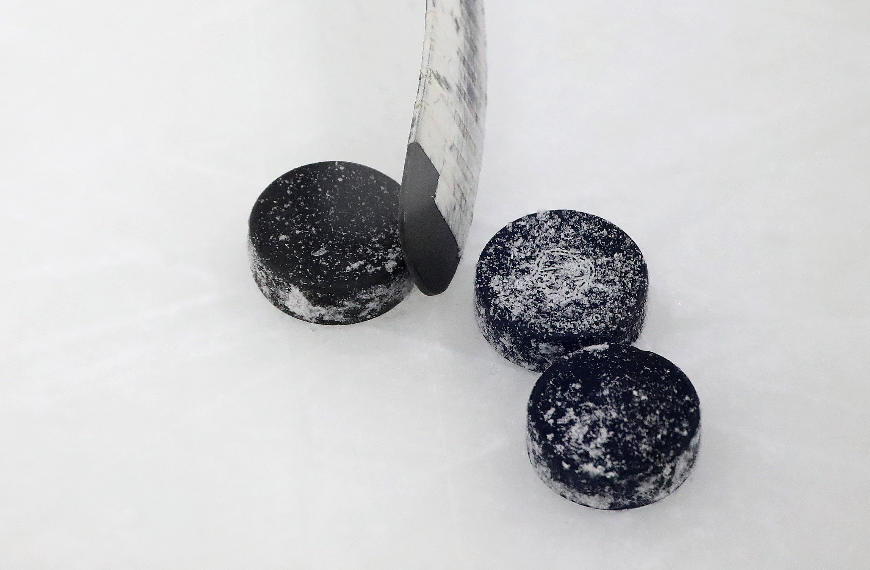 The Toronto Maple Leafs hold their prospects development camp