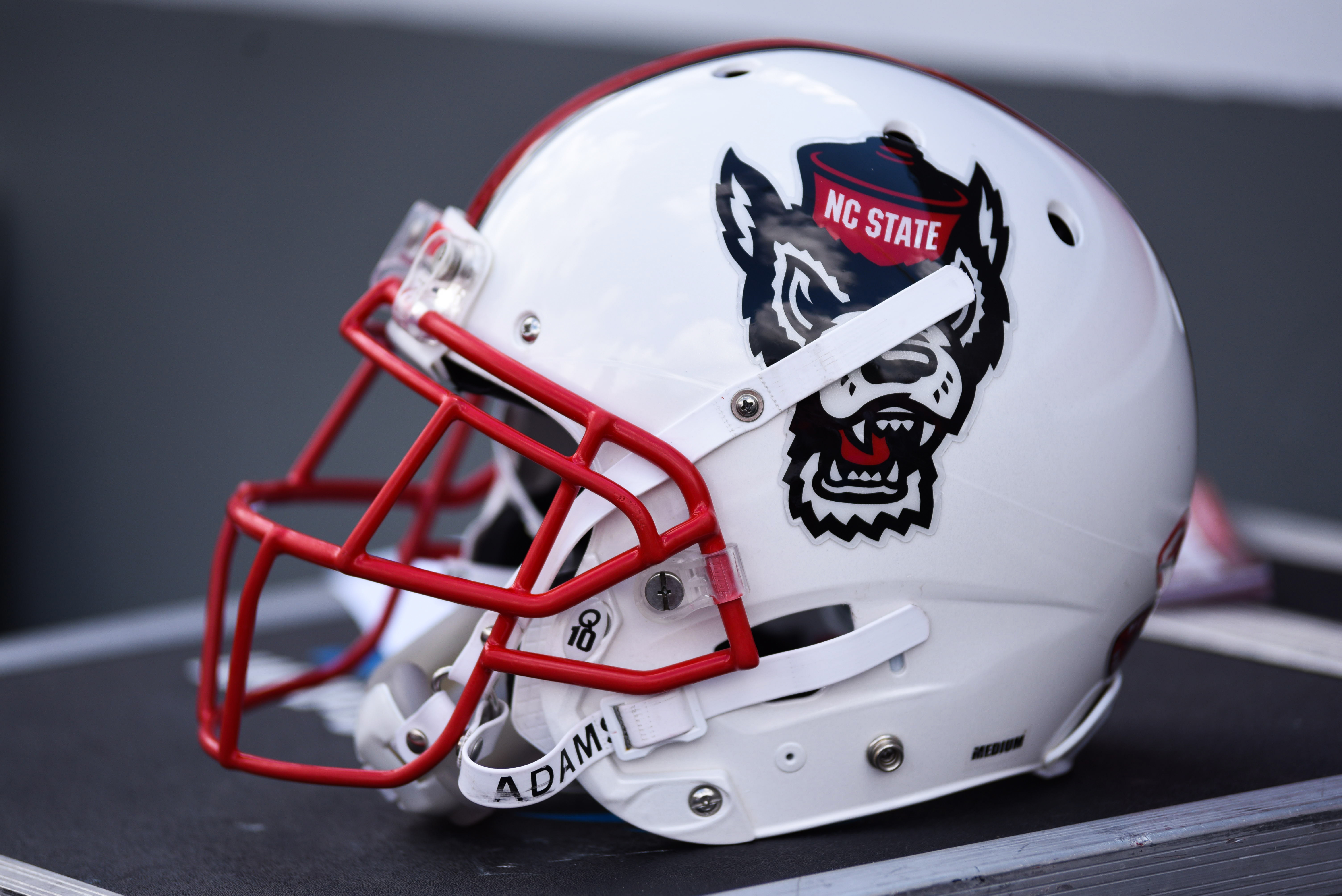 COLLEGE FOOTBALL: SEP 16 Furman at NC State