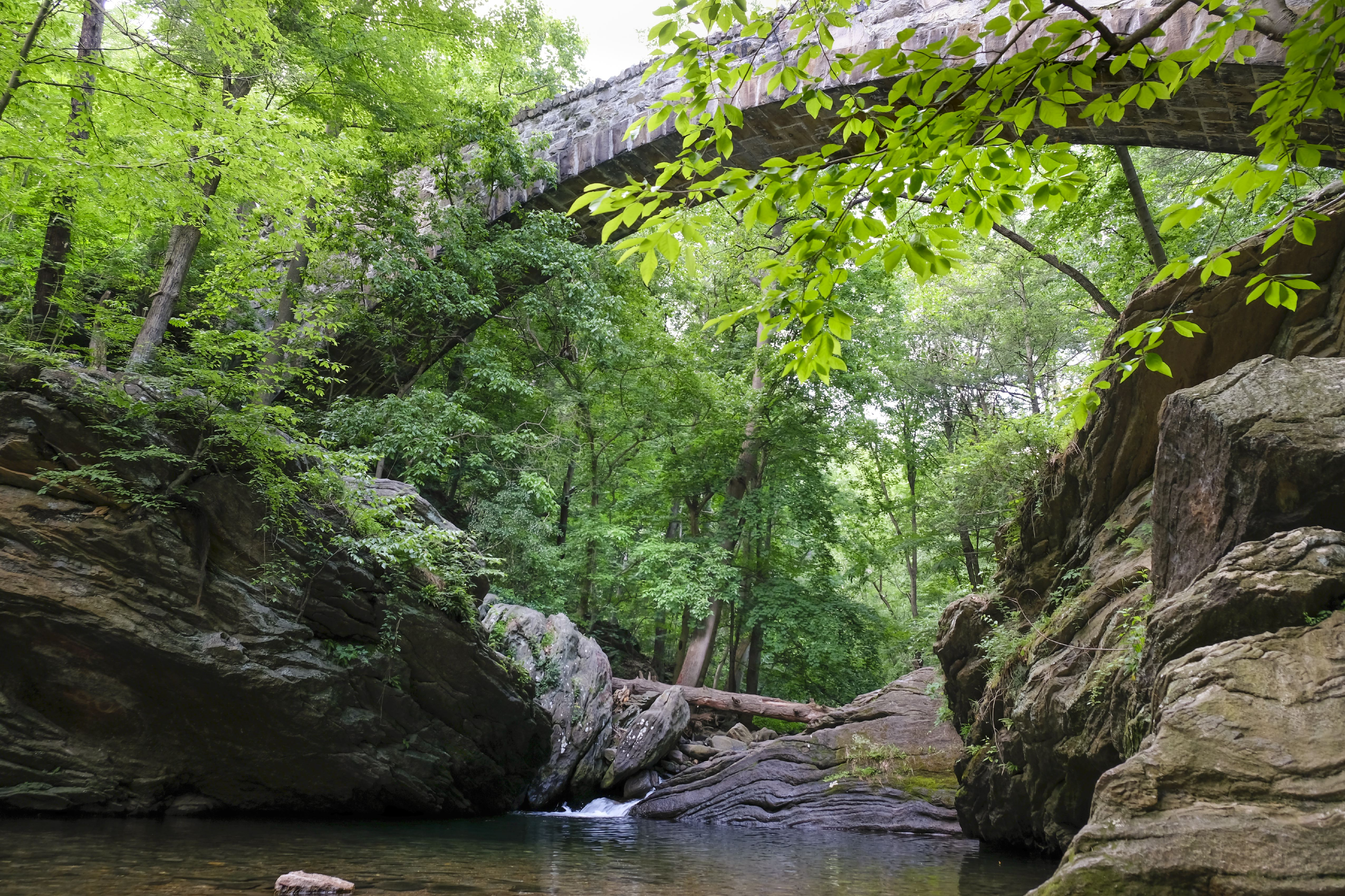 Devils Pool swimming hole and Cresheim Creek in Wissahickon Creek Valley Park, Northwest Philadelphia, Pennsylvania