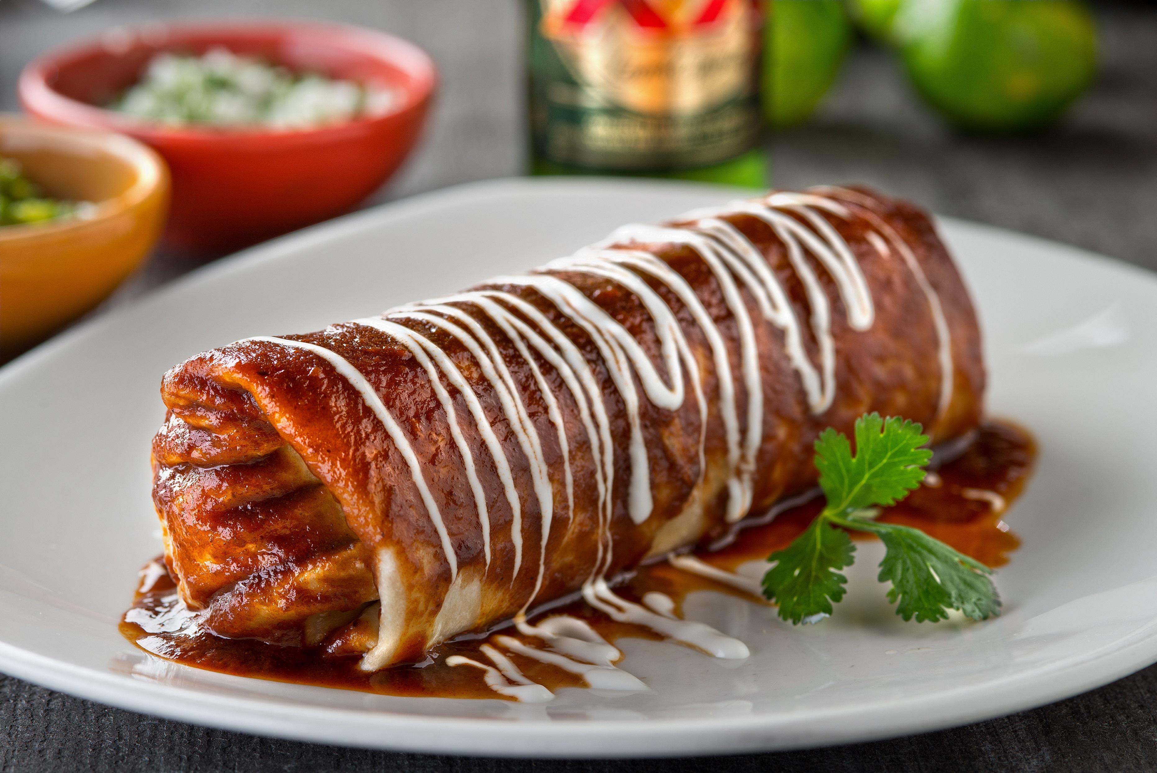 A beef barbacoa burrito on a white plate.