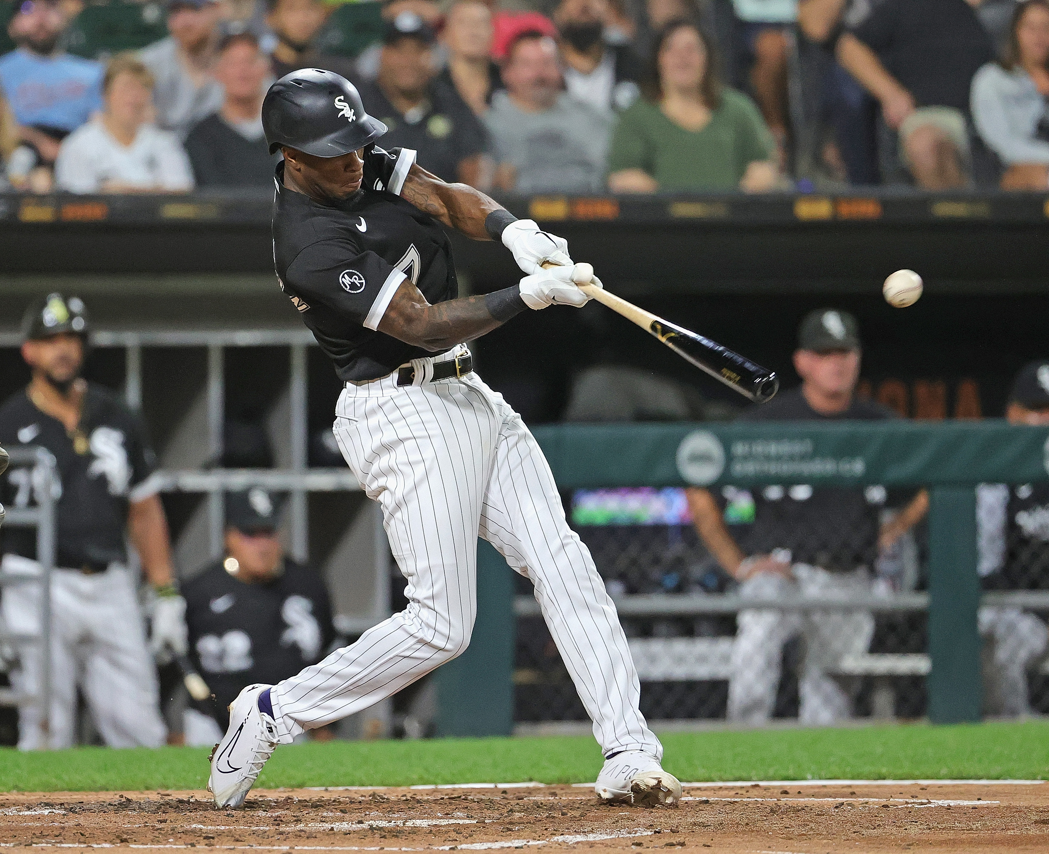 The White Sox' Tim Anderson is back at it.