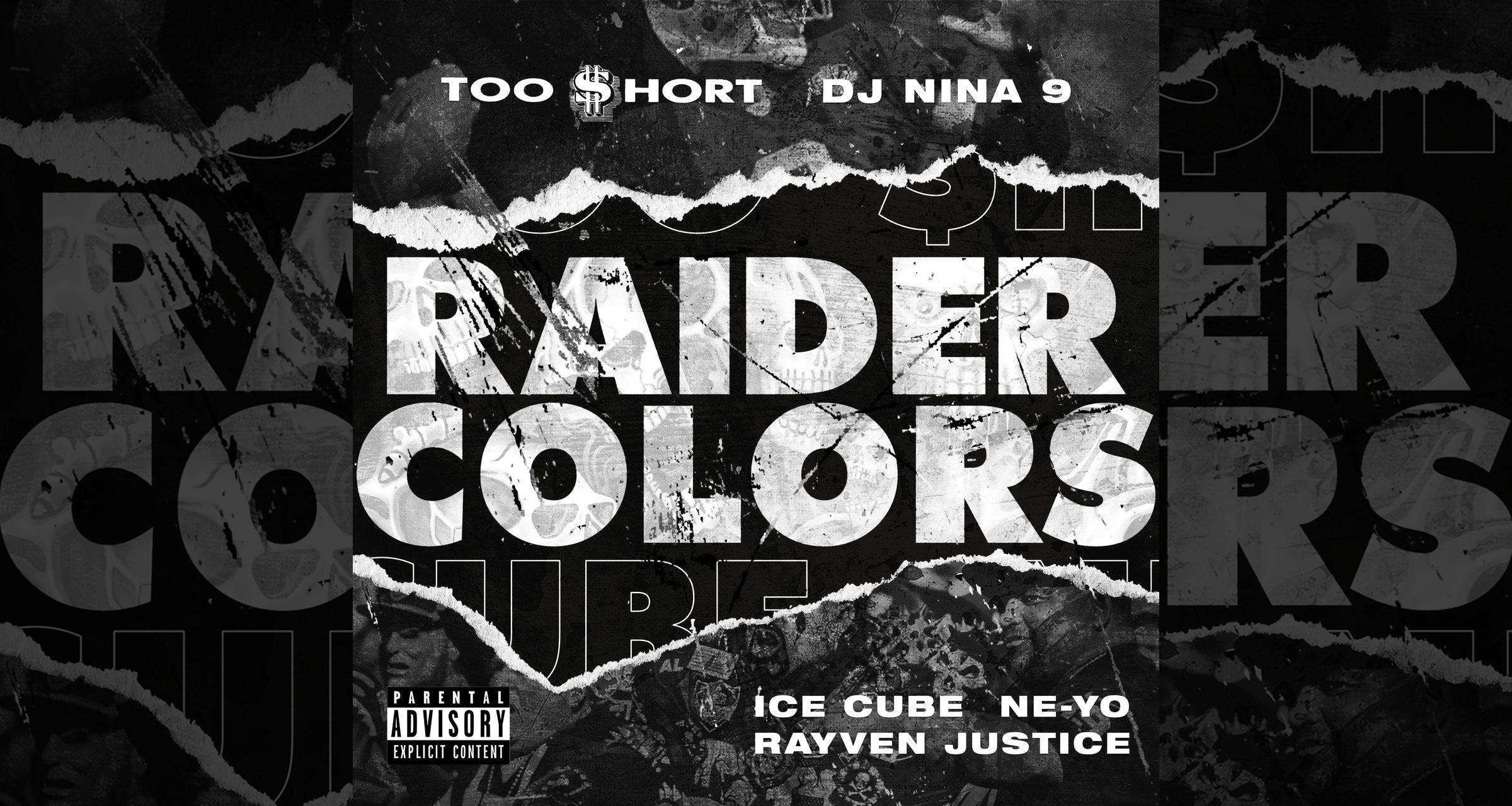 "Artwork for ""Raider Colors"""