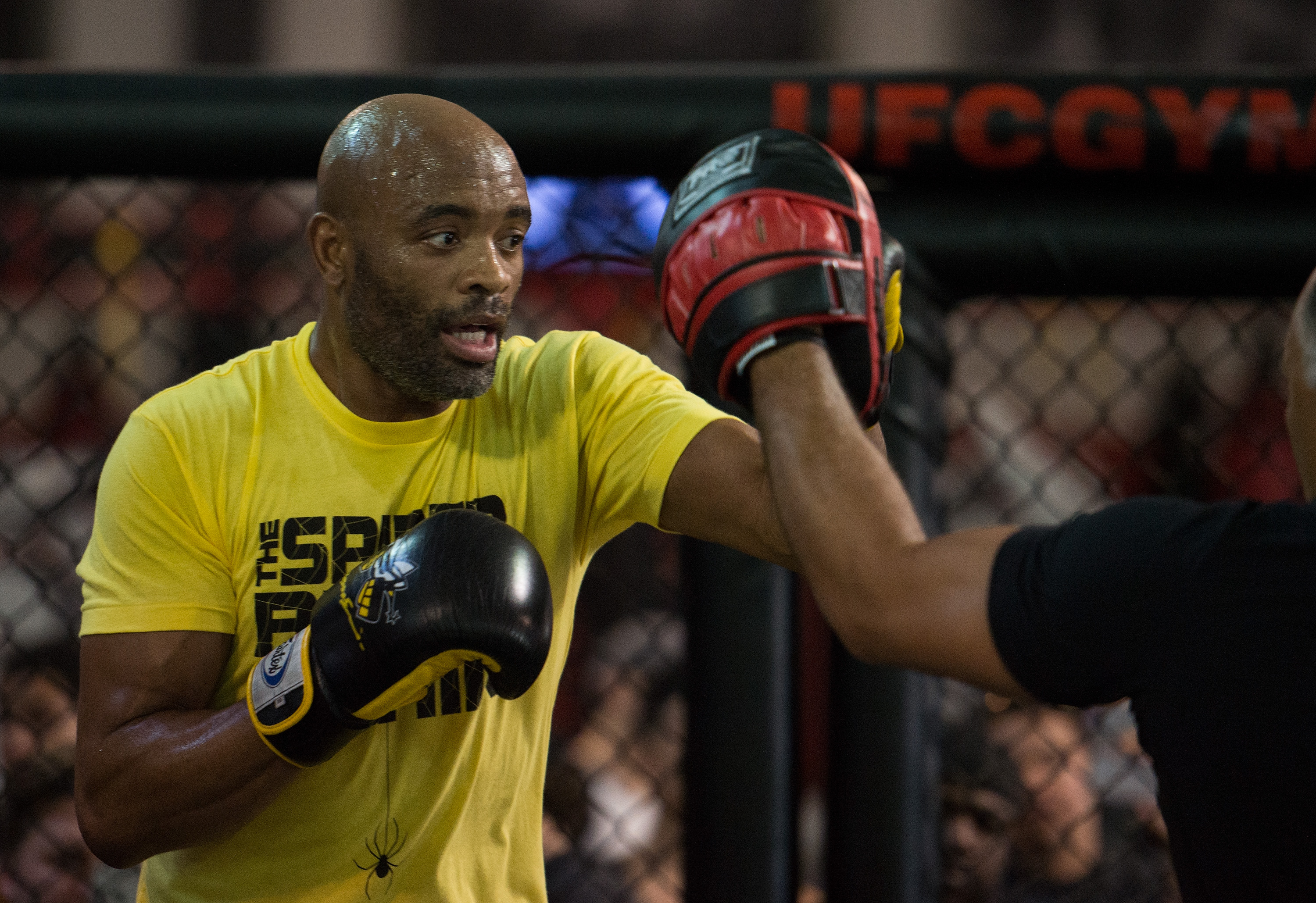 Anderson Silva & Michael Bisping Media Workout