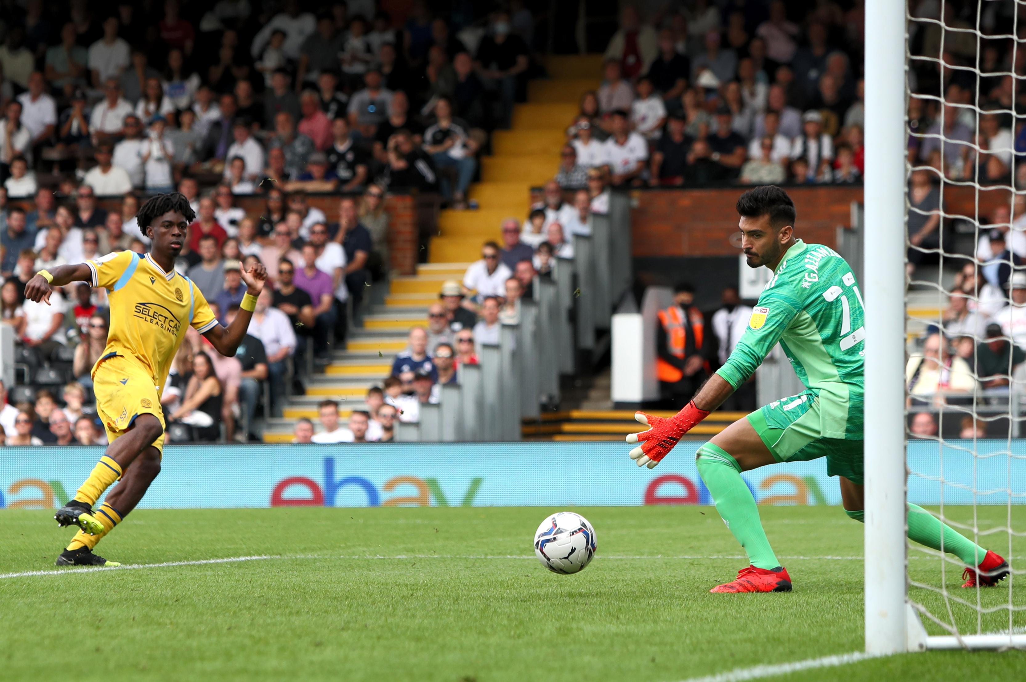 Fulham v Reading - Sky Bet Championship - Craven Cottage