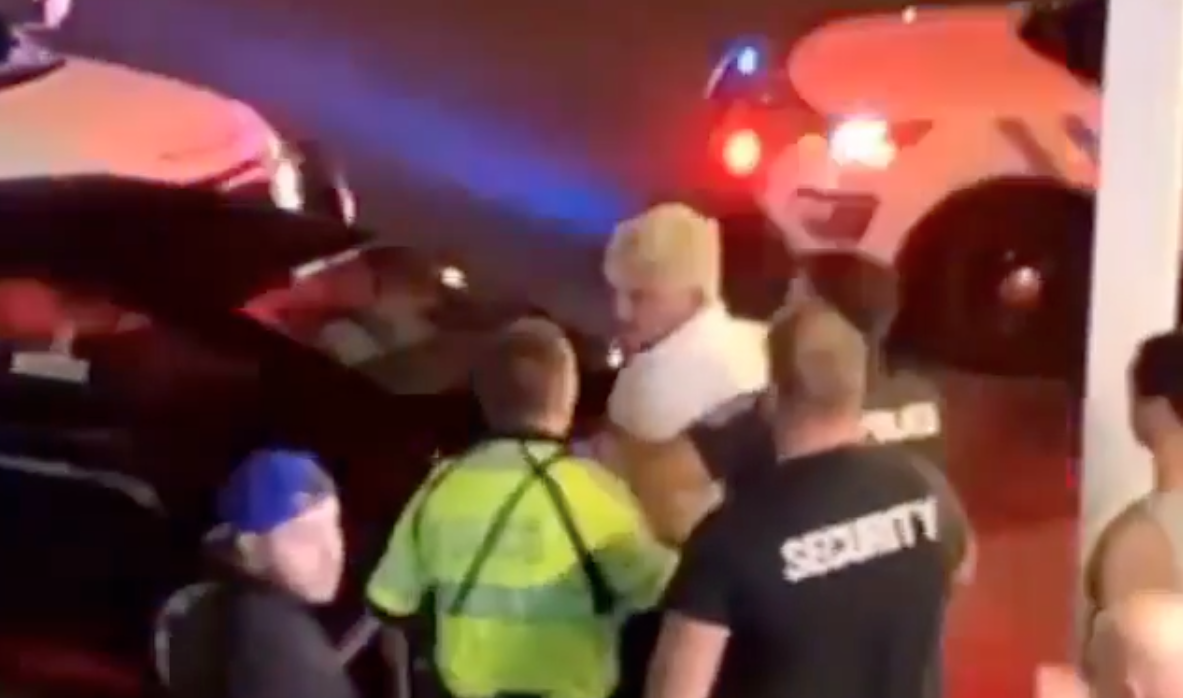 A recent video shows Conor McGregor's training partner Dillon Danis being taken into police custody.