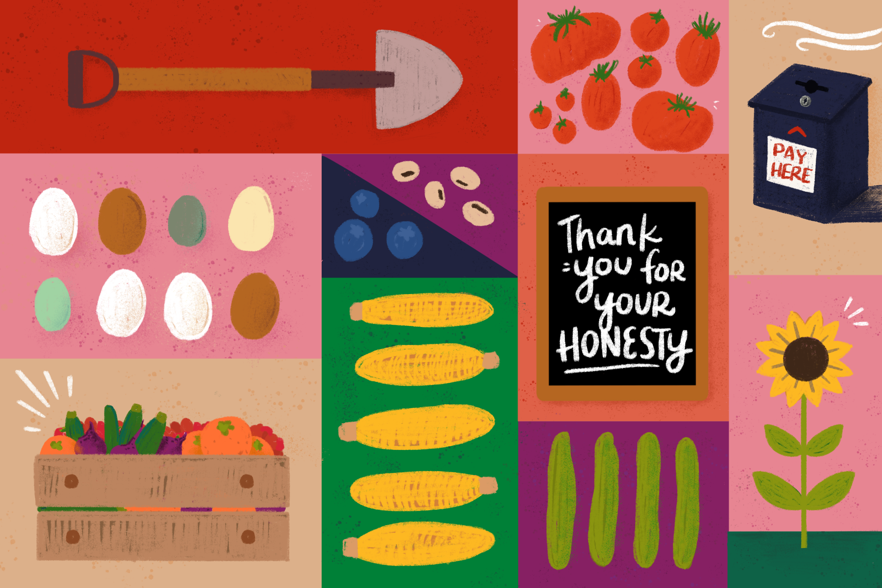 """An illustration of brightly colored panels showing a shovel, tomatoes, multi-colored eggs, ears of corn, cucumbers, a sunflower, a crate full of produce, blueberries, beans, a cash box that says """"Pay Here,"""" and a chalkboard sign that says """"Thank you for your honesty."""""""