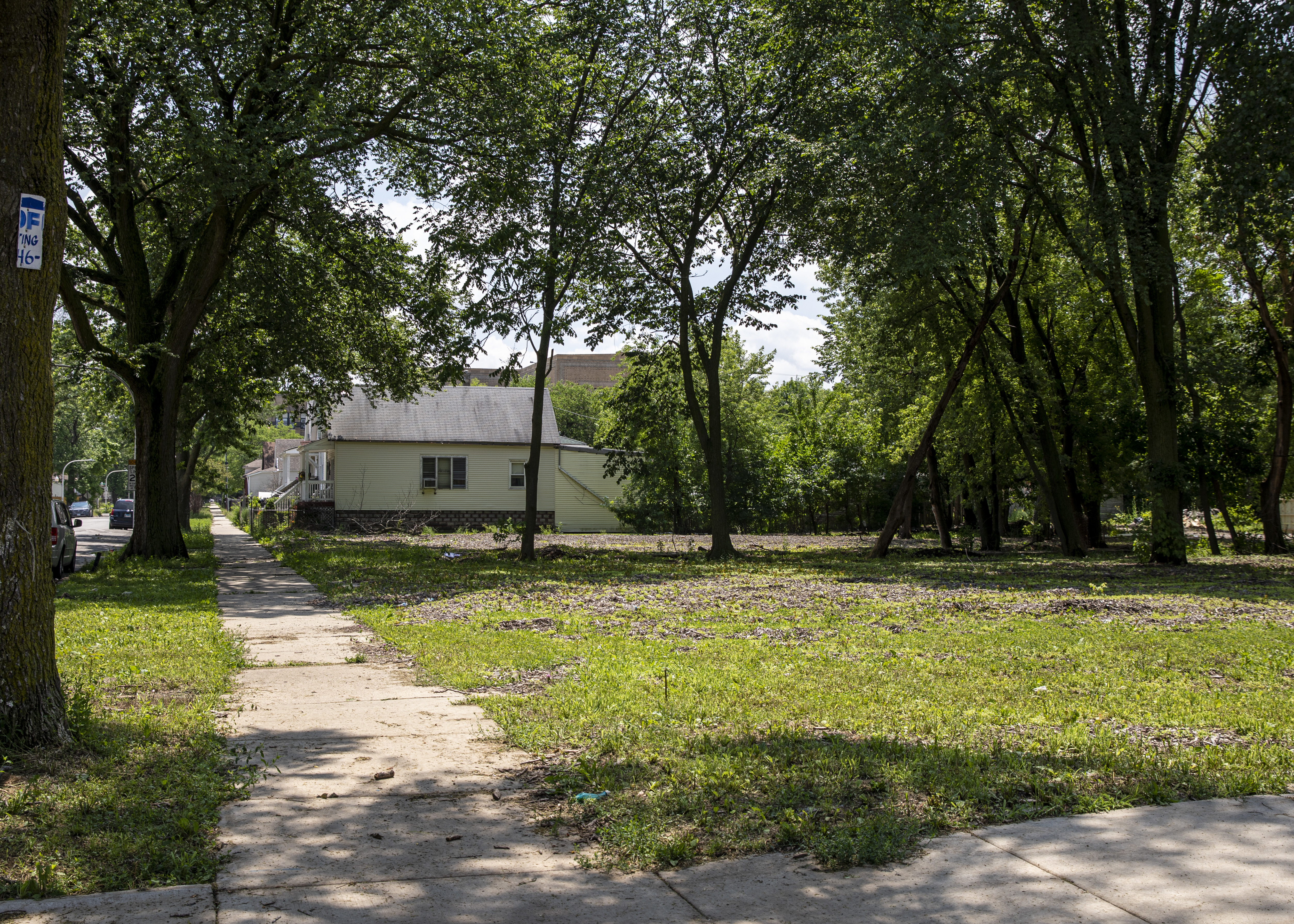 Vacant lots sit in the 6400 block of South Wood Street in Chicago's Englewood neighborhood on the South Side, Wednesday, July 3, 2019.