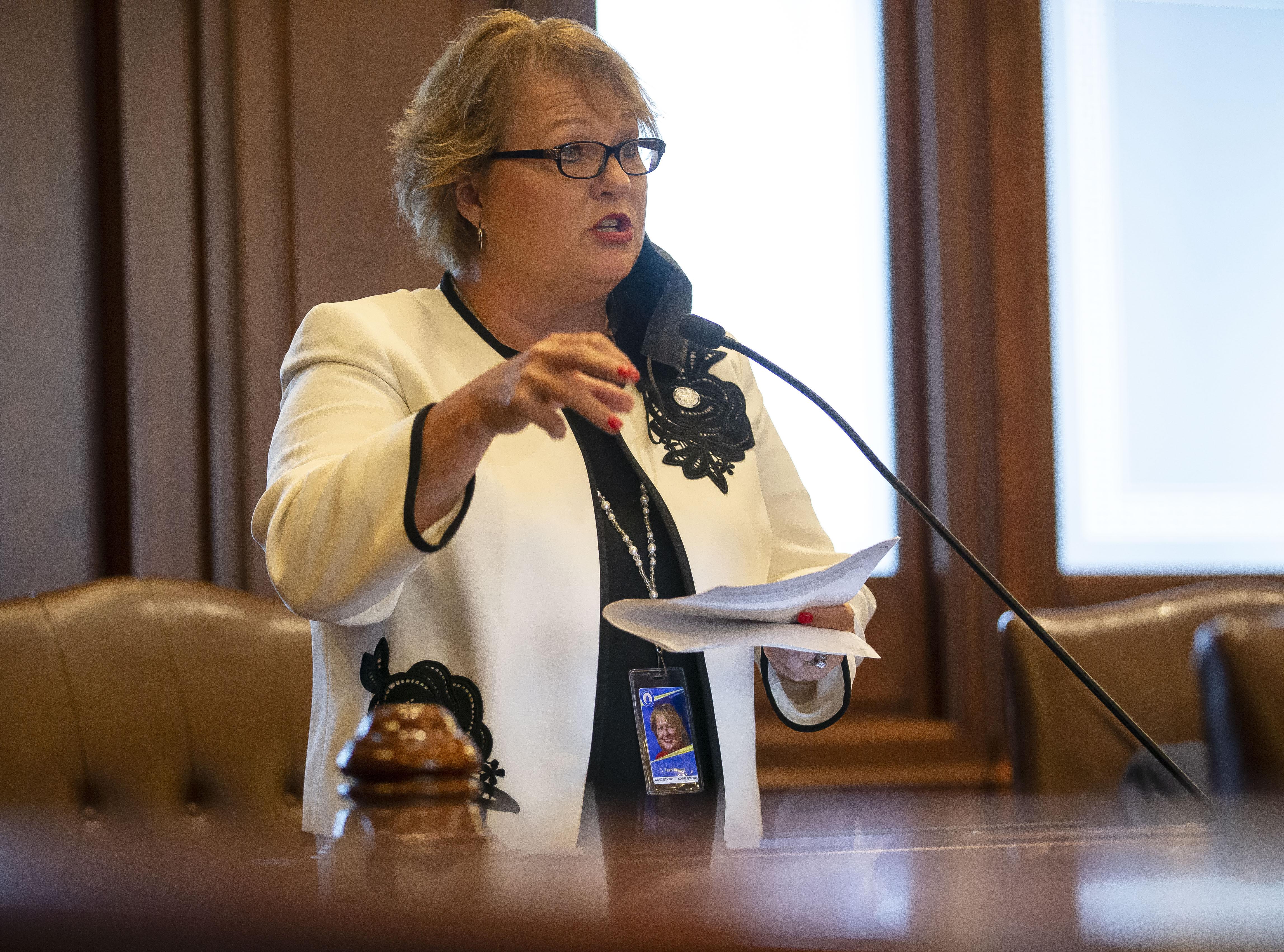 State Sen. Terri Bryant, R-Murphysboro, speaks on the floor of the Illinois Senate in September.