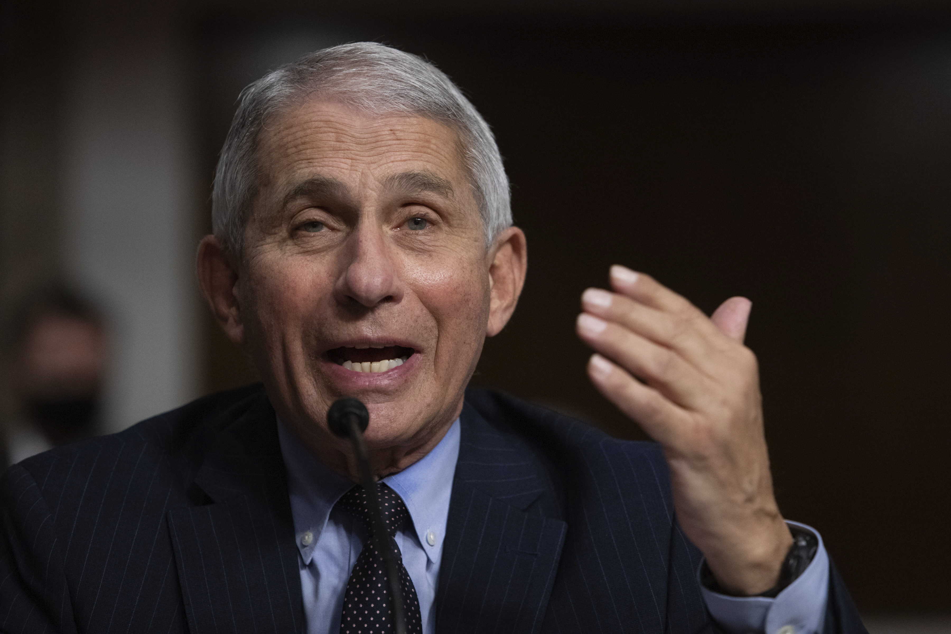 Dr. Anthony Fauci speaks to Congress.
