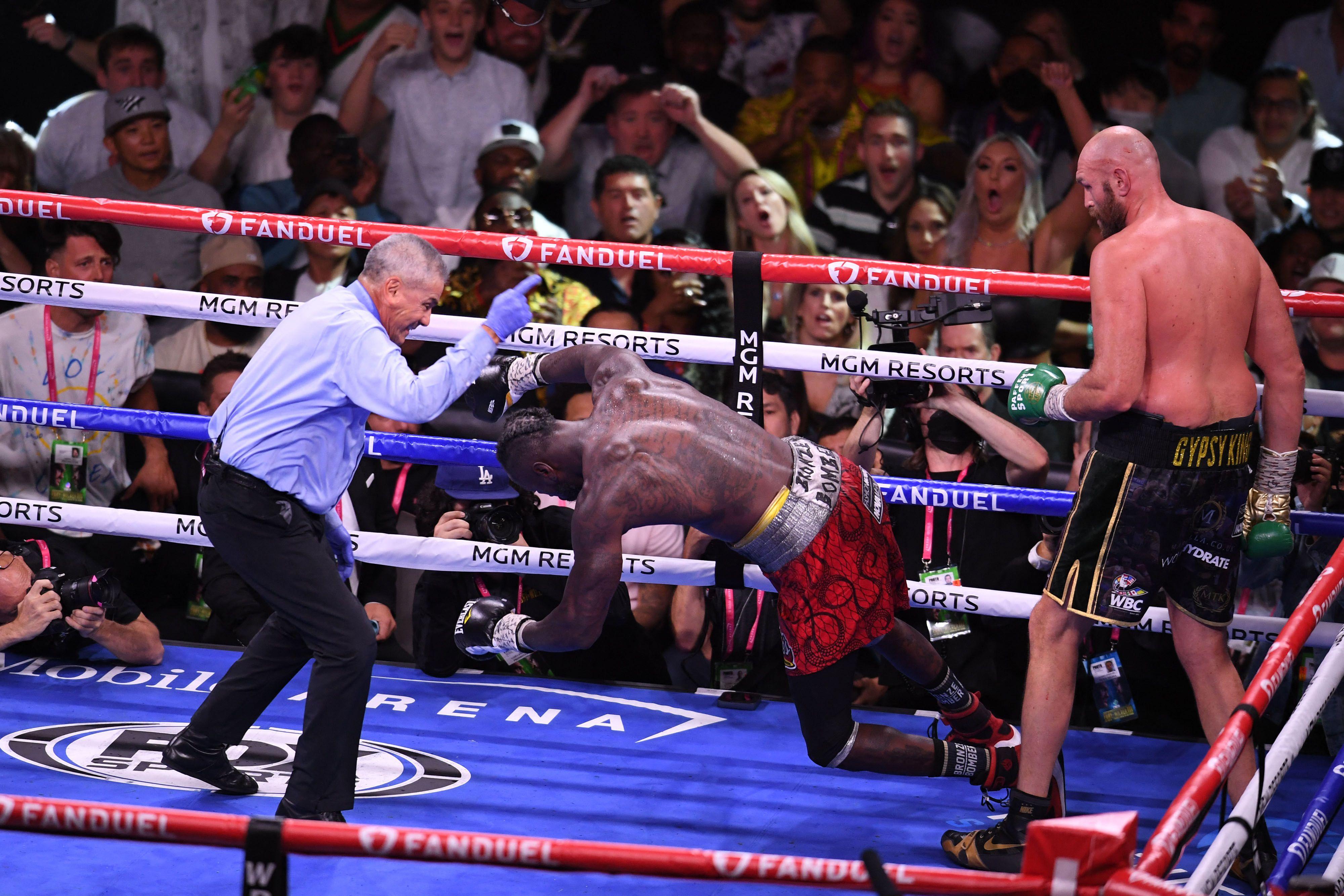 USA-BOX-HEAVY-WBC-GBR-US-FURY-WILDER
