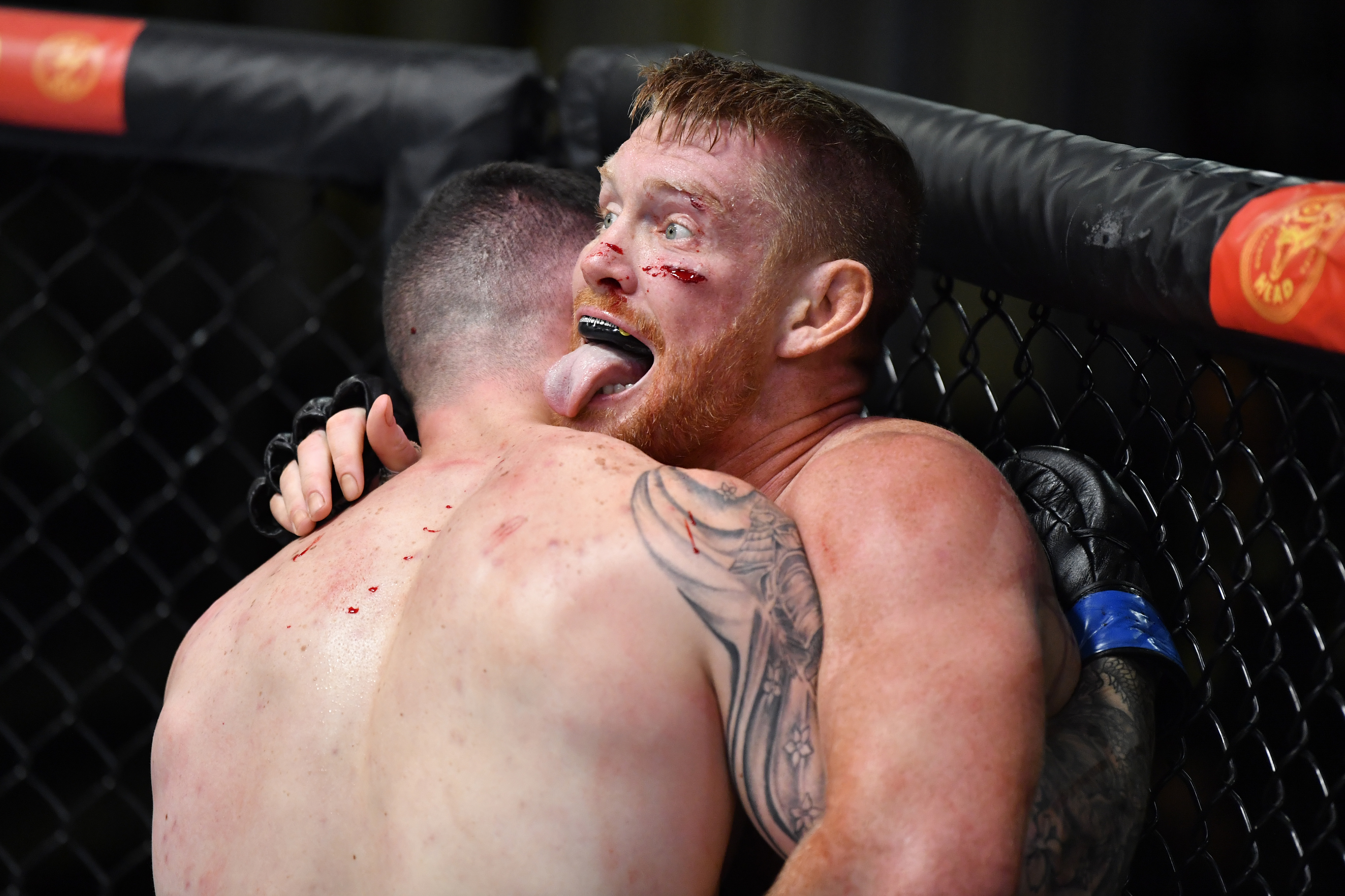 UFC战斗之夜:阿尔维诉图尔曼