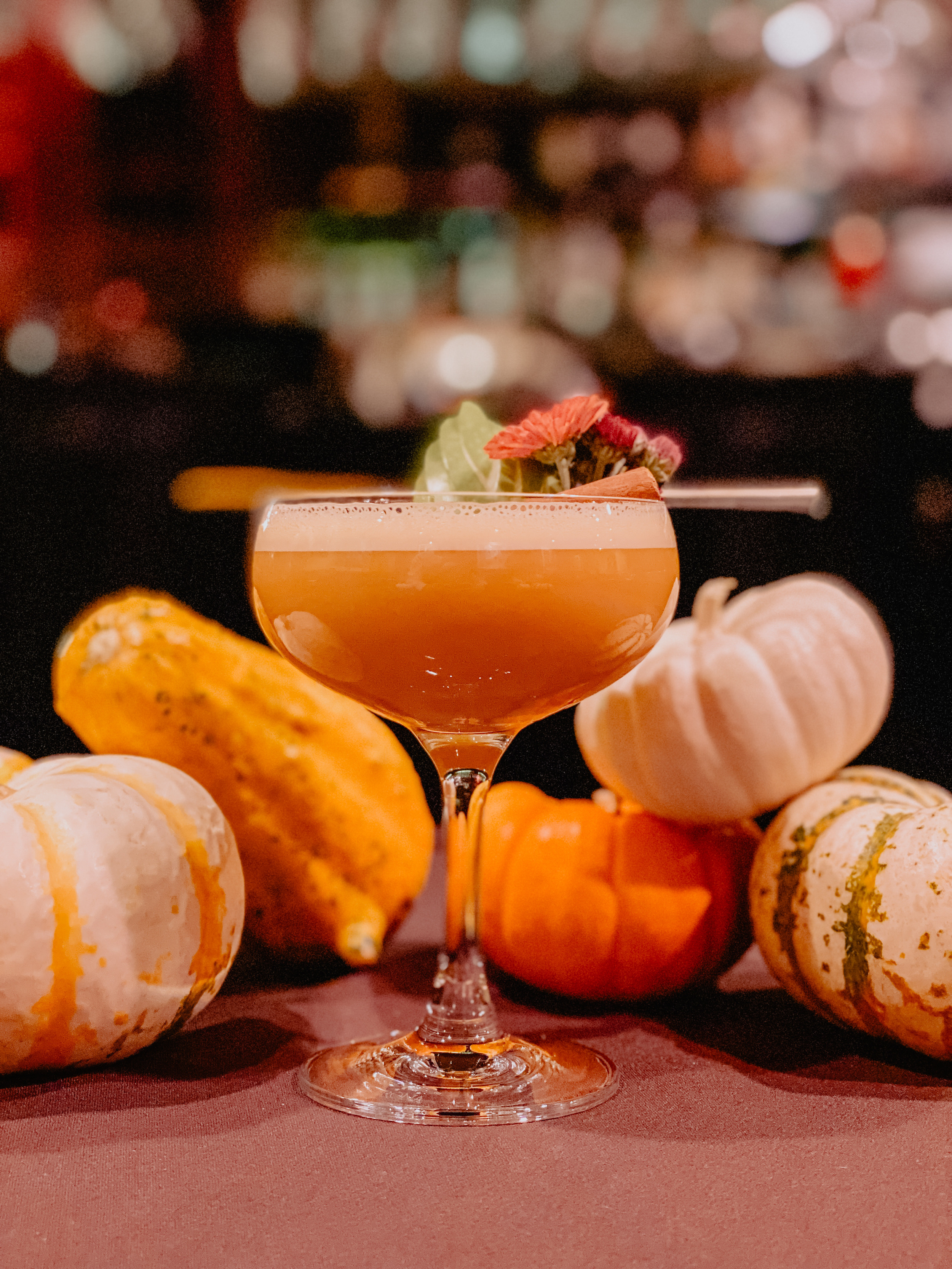An orange cocktail in a coupe glass with decorative squash around it.