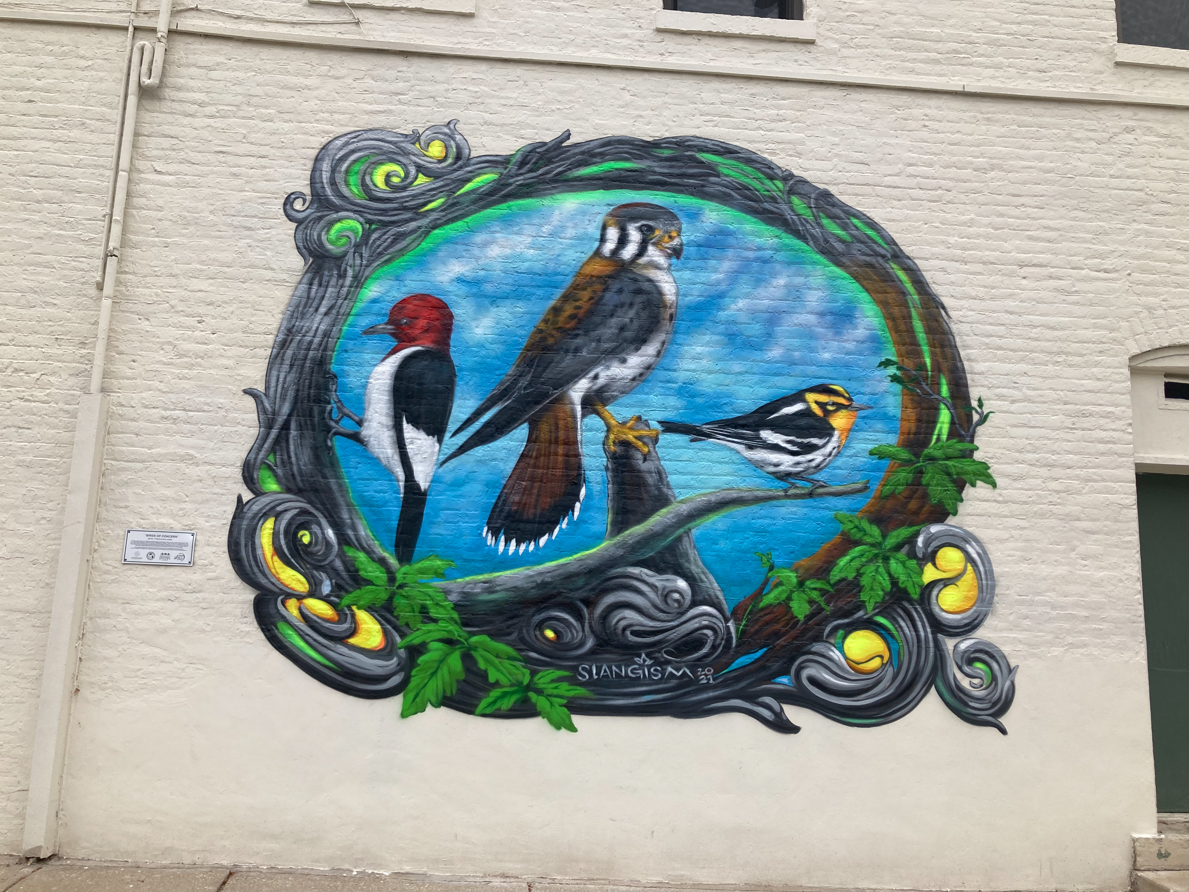 """Tyrue """"Slang"""" Jones' Evanston mural """"Birds of Concern"""" at 1901 Central St. depicts three birds common in Ilinois that are considered vulnerable: the red-headed woodpecker, the American kestrel and the Blackburnian warbler."""