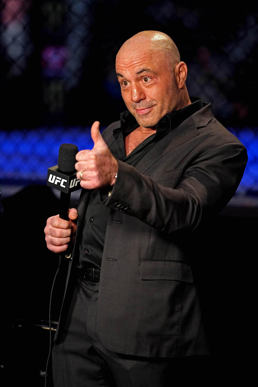 MMA: UFC 261-Na vs Carnelossi