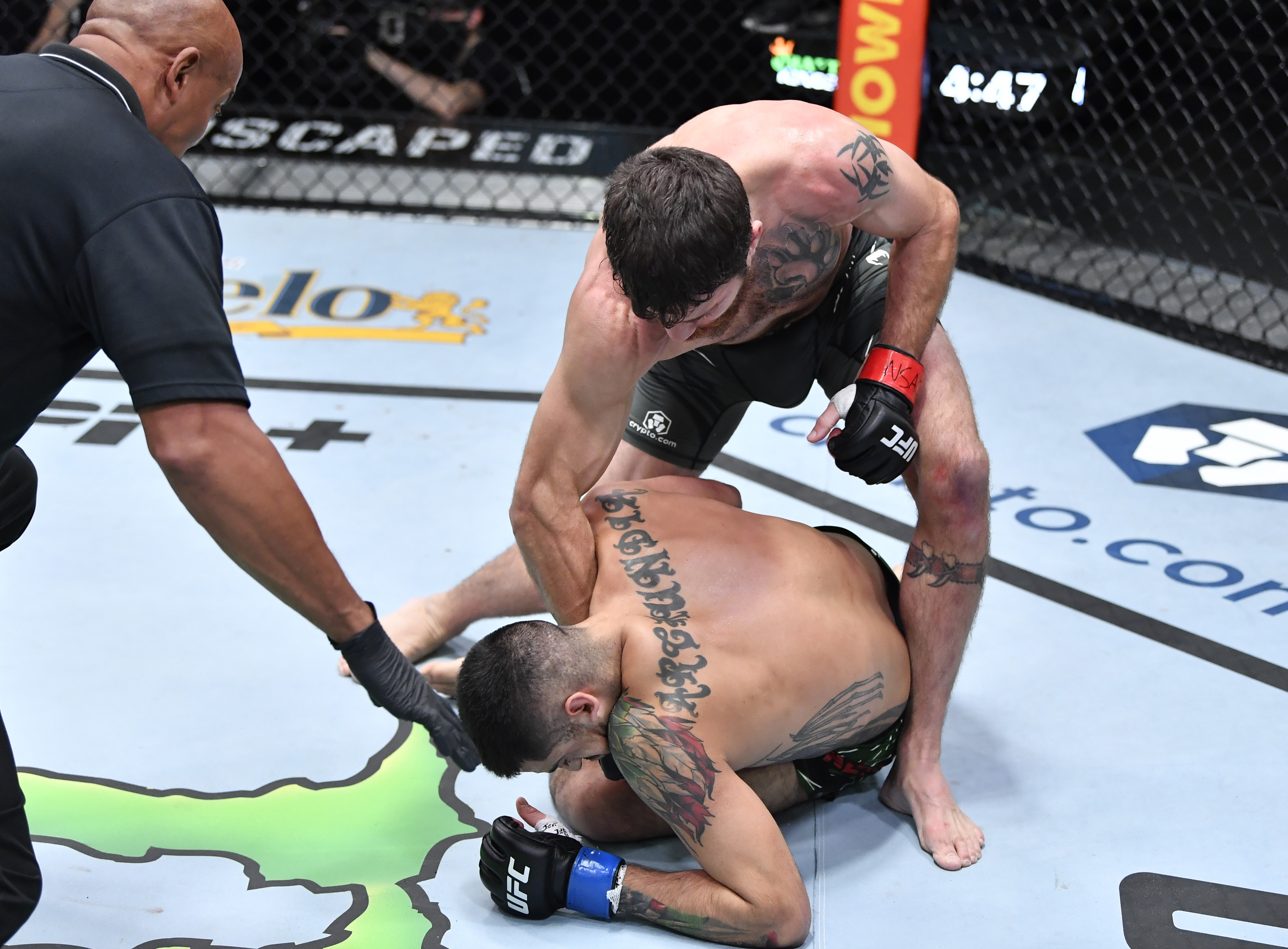 UFC Fight Night: Miller v Gonzalez