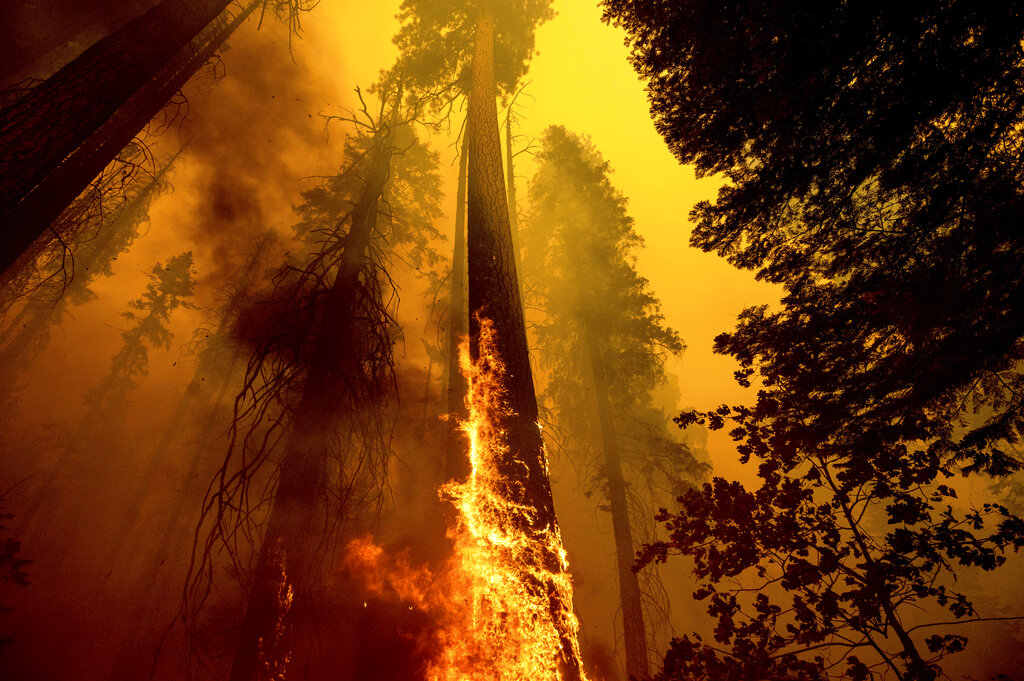 California extended a state of emergency.