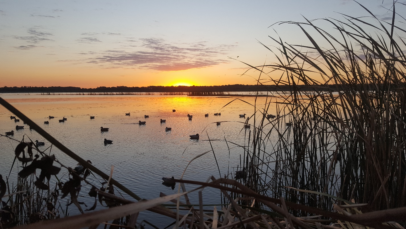 """After flying the INHS aerial waterfowl survey on Tuesday, Joshua Osborn opined, """"Good luck and straight-shooting to all the north-zone folks and central-zone youth hunters!""""  Credit: Joshua Osborn/Illinois Natural History Survey"""