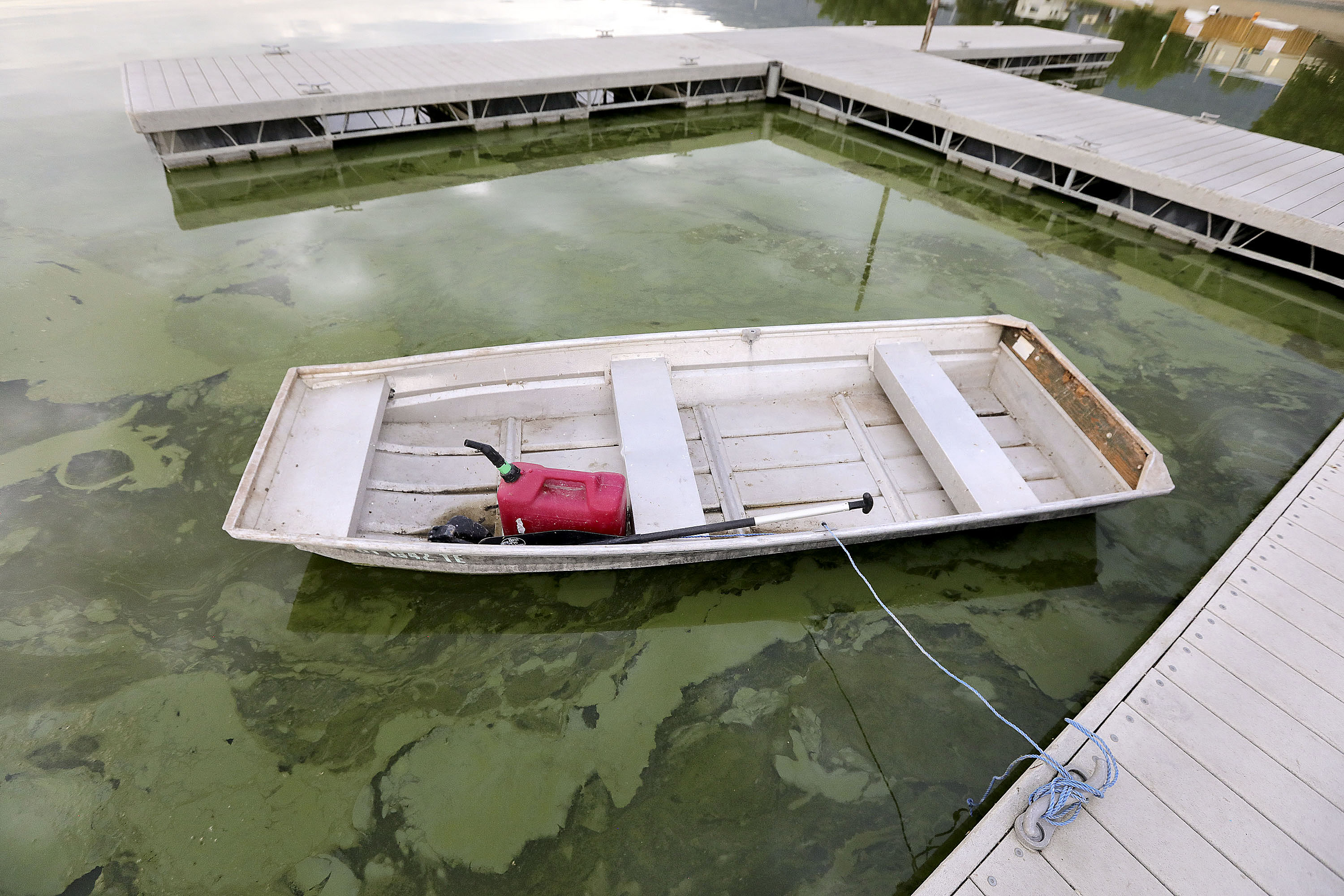 Algal blooms are pictured in Utah Lake at the Lindon Marina in Vineyard on Monday, July 19, 2021. It has been a problem for the lake for years.