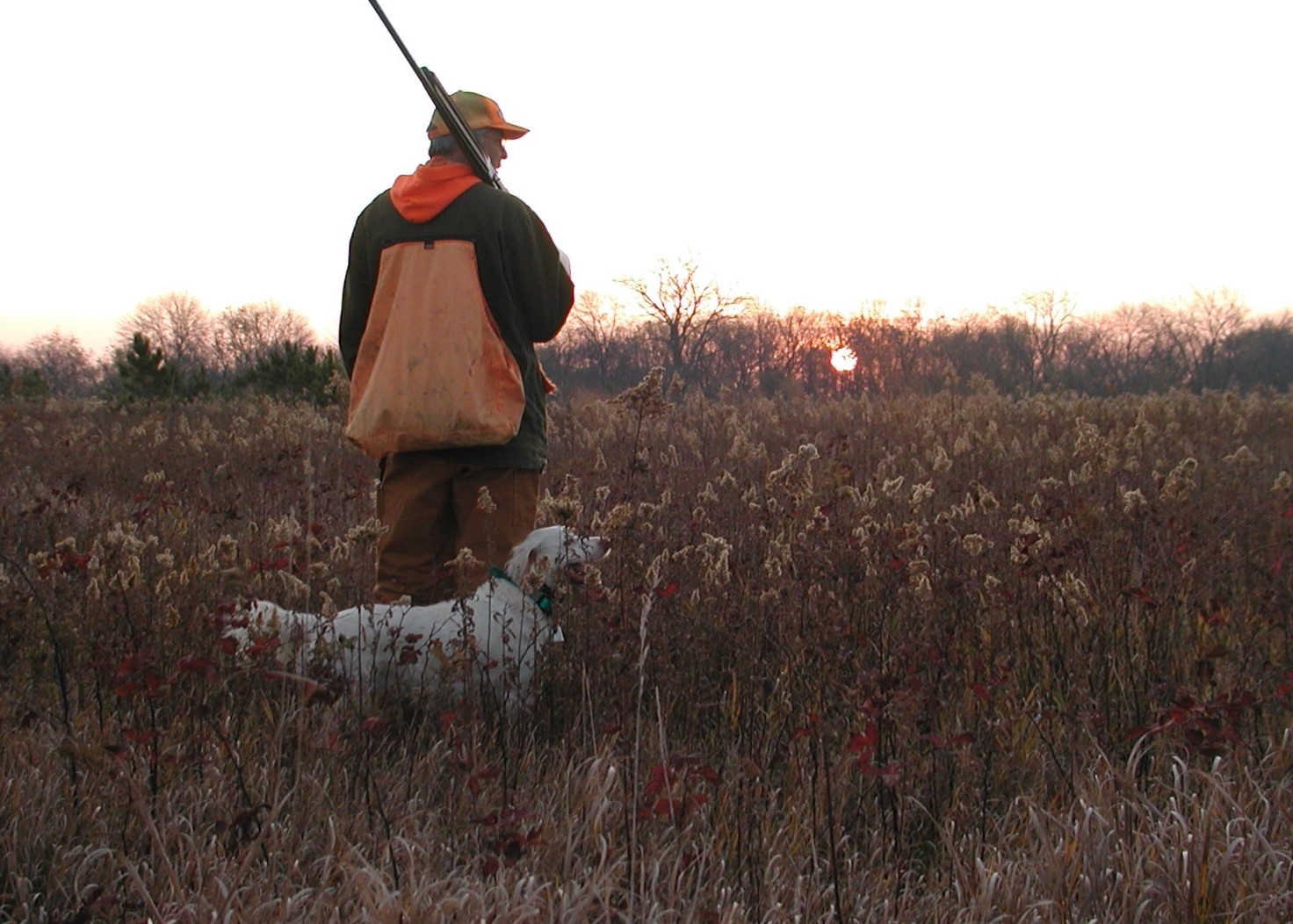OtisKirchhoefer and his Dixie (one of my favorite dogs I have hunted with) look into the rising sun a decade ago on opening weekend of pheasant hunting in Illinois; pheasant season opens Nov. 6. Credit: Dale Bowman