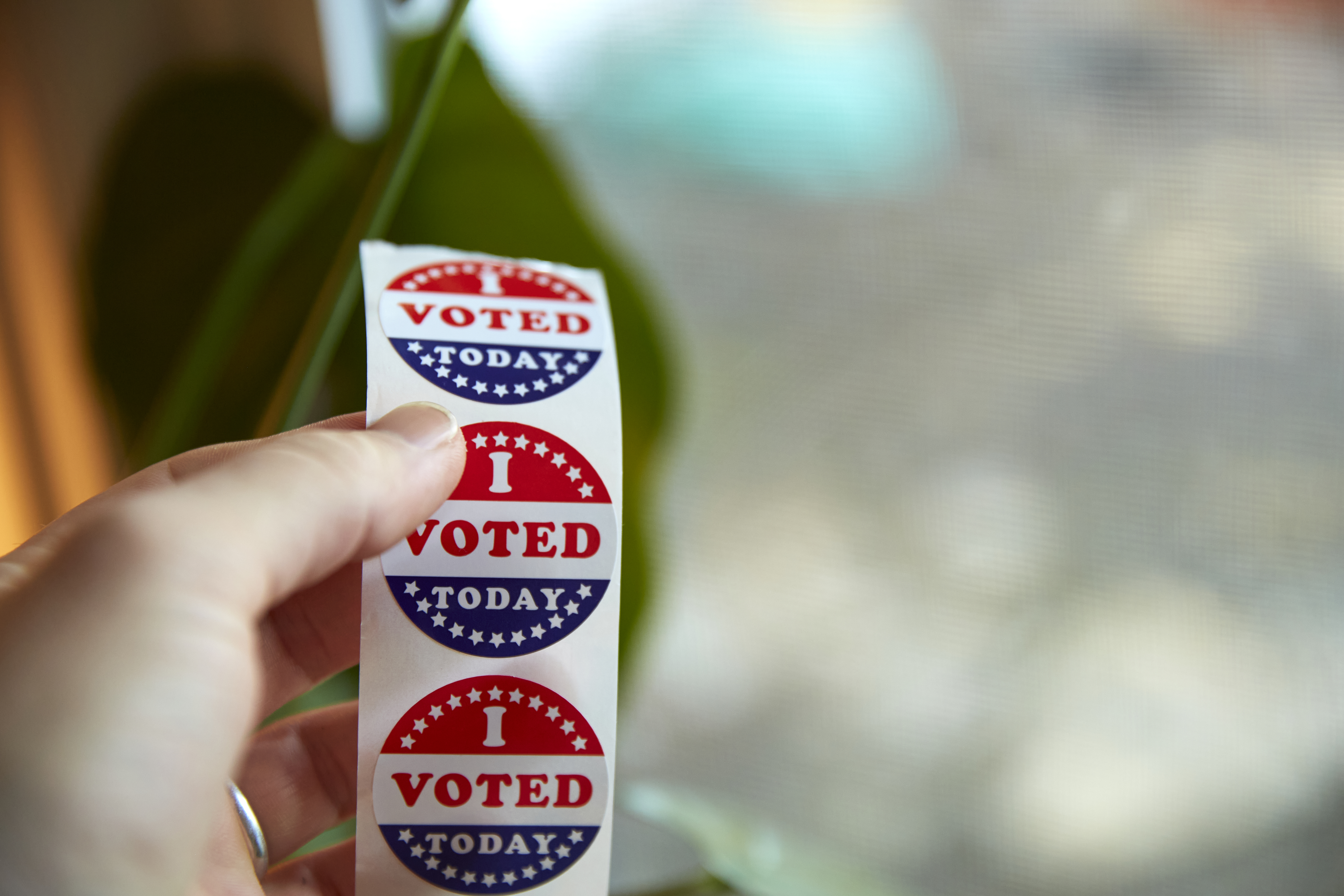 """A hand holds a strip of """"I Voted Today"""" stickers."""