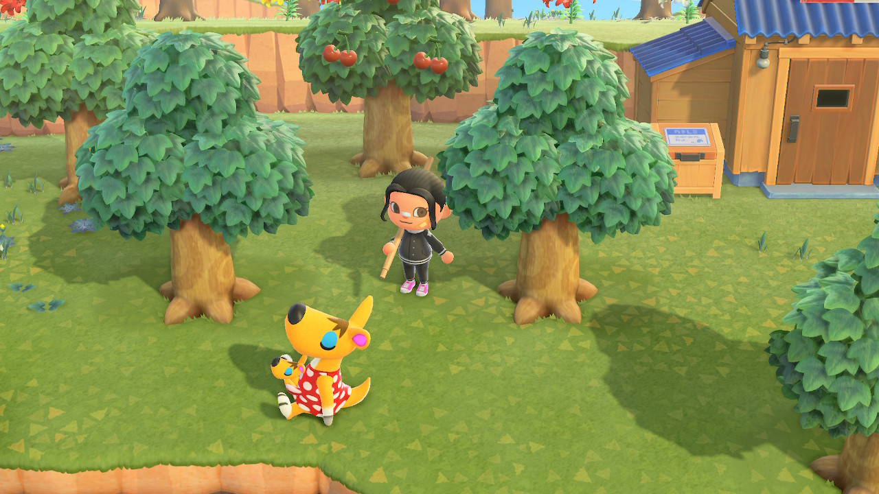 A Kangaroo sits dreamily on the grass while an Animal Crossing characters stands with a pole vault