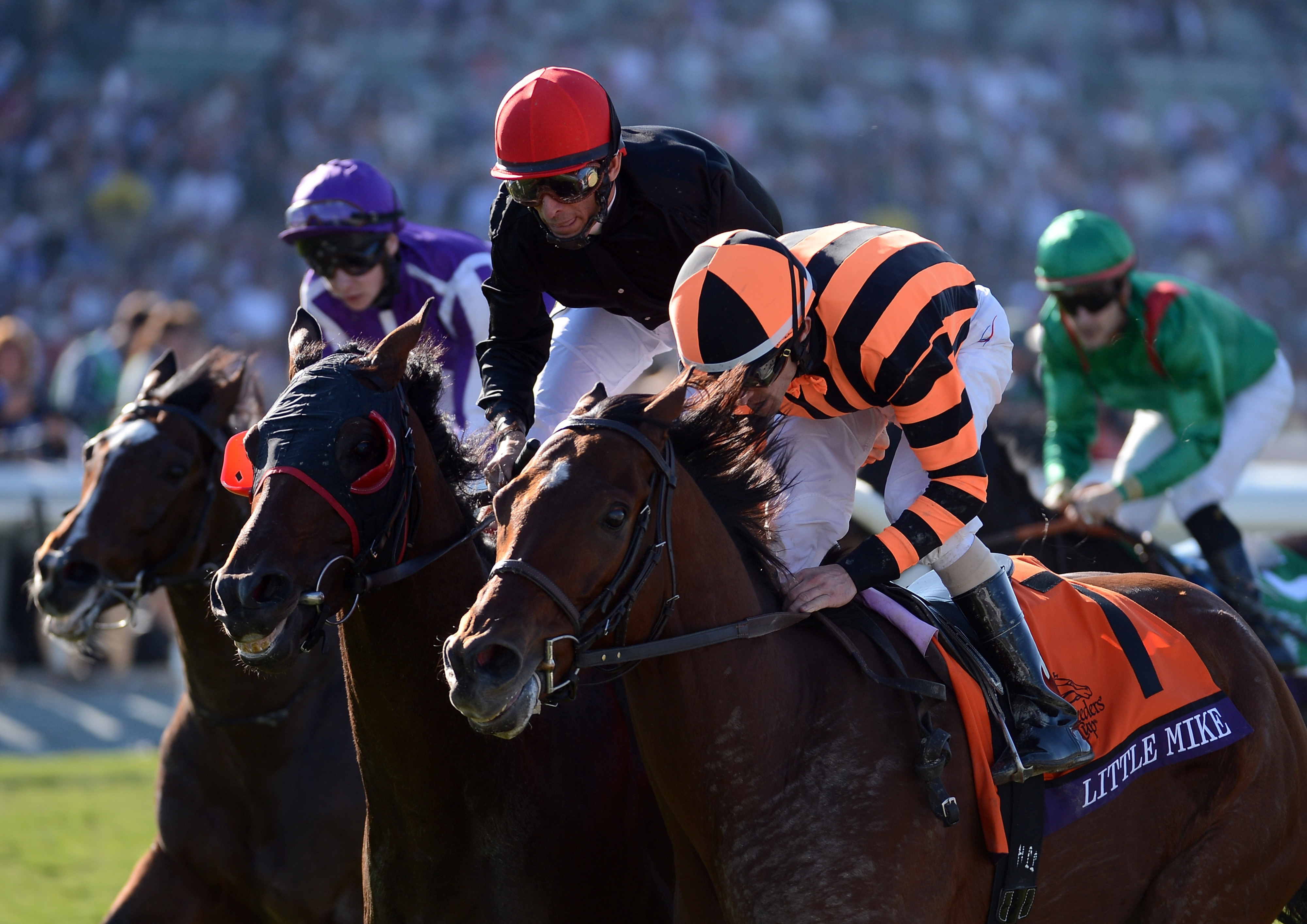 Little Mike edges Point of Entry for the BC Turf at Santa Anita in November 2012.
