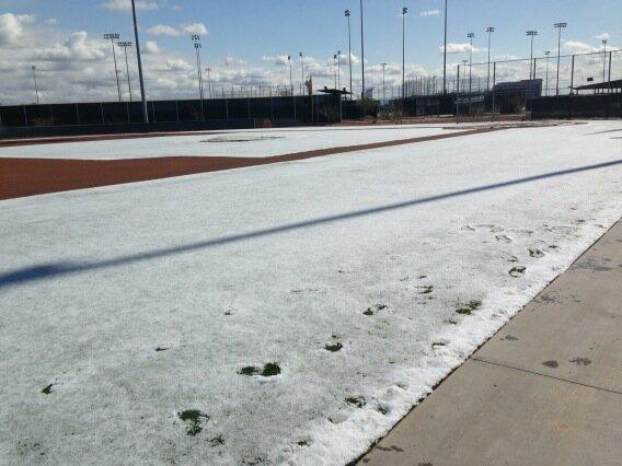 Grass still covered in ice at SRF